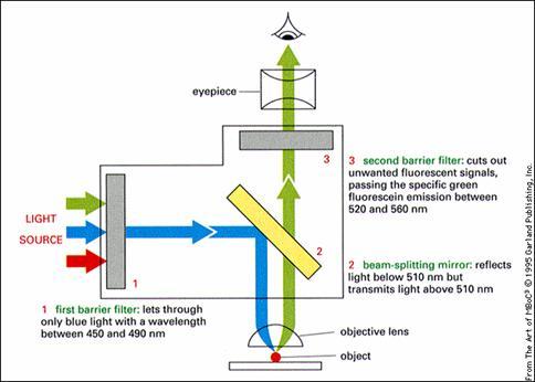染料的原理_化学家发明纳米材料处理染料废水